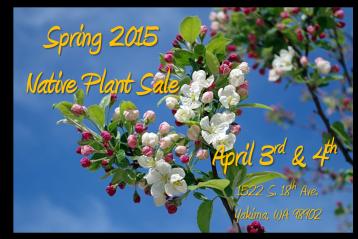 Plant Sale 2015 image